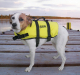 Dog Life Vest, Yellow, L 50 to 90 Lbs. - Seac …