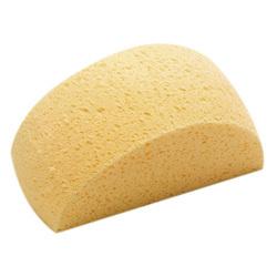 All Purpose Sponge Camelback - Captain's  …