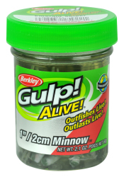 "Berkley Gulp! Alive! 1"" Minnow - Color:  …"