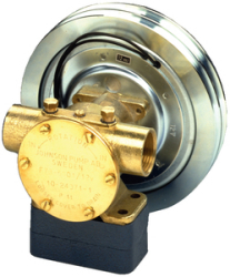 F7b-50017 1  Npt With 12 Volt - Johnson Pump