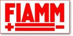 Fiamm Technologies Inc