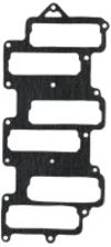 Reed Plate Gasket - Sierra