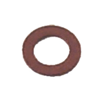 Strainer Cover Screw Gasket - Sierra