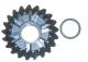 Reverse Gear - Sierra