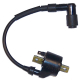 Ignition Coil  - Sierra