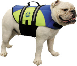Neoprene Doggy Vest, M, Blue/Yellow, 20-50 lbs. - Paws Aboard