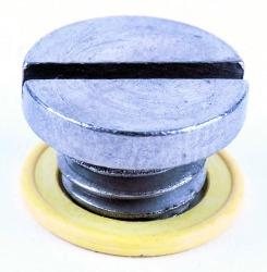 Drain Plug - Mercury
