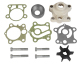 Water Pump Kit w/housing - Sierra