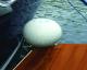 "Dock Wheel,  12"", Straight Mount - Taylo …"