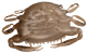 "Berkley Gulp! Saltwater 2"" Peeler Crab - Color: Natural Peeler"