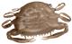 """Berkley Gulp! Saltwater 2"""" Peeler Crab - Color: Natural Peeler"""